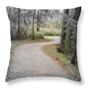 Path To Discovery Throw Pillow