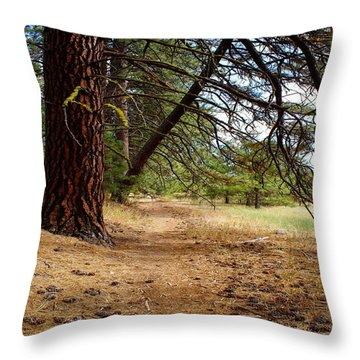 Throw Pillow featuring the photograph Path To Enlightenment 1 by Ben Upham III
