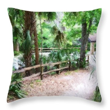 Path To Shade Throw Pillow