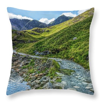 Throw Pillow featuring the photograph Path To Snowdon by Ian Mitchell