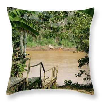 Path To The Amazon River Throw Pillow