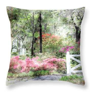Path To The Bridge Throw Pillow