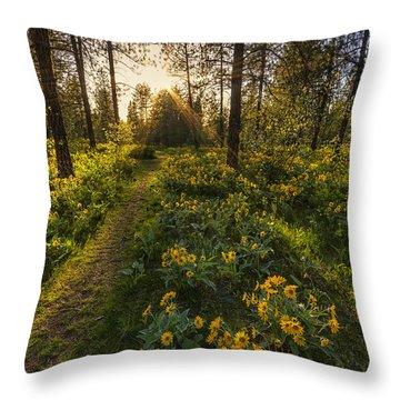 Path To The Golden Light Throw Pillow