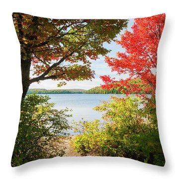 Throw Pillow featuring the photograph Path To The Lake by Elena Elisseeva