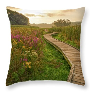 Path To The Light Throw Pillow by Angelo Marcialis