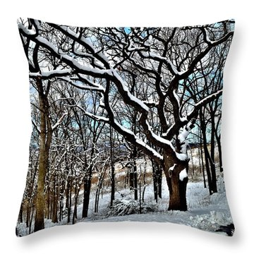 Path To The Lookout Throw Pillow