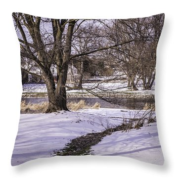 Path To The River Throw Pillow by Anne Witmer