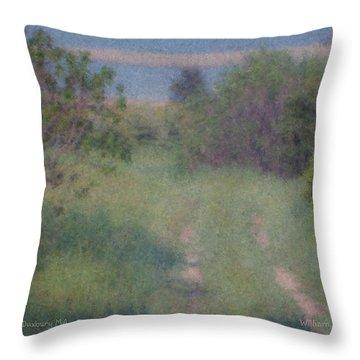 Path To The Sea - Duxbury Ma Throw Pillow