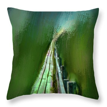 Path To The Unknown #h5 Throw Pillow