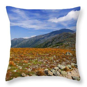 Path To Washington Throw Pillow