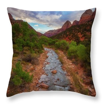 Throw Pillow featuring the photograph Path To Zion by Darren White