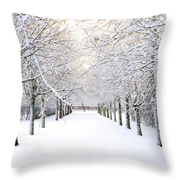 Pathway In Snow Throw Pillow