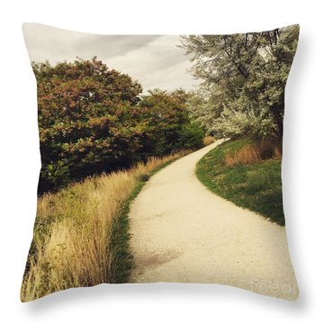 Pathway Throw Pillow by Louise Fahy