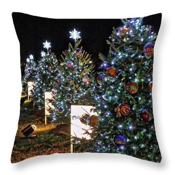Throw Pillow featuring the photograph Pathway Of Peace by Suzanne Stout