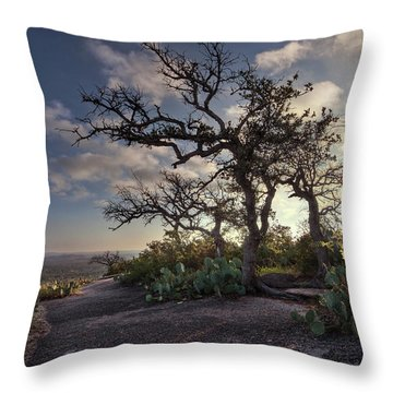 Pathway On Top Of Enchanted Rock Throw Pillow