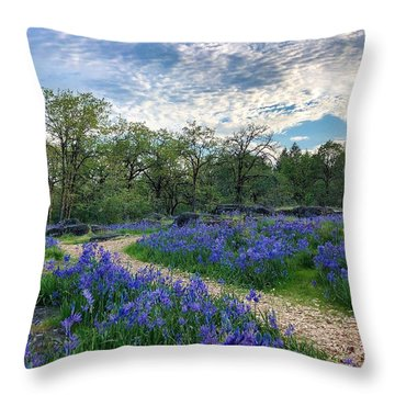 Pathway Through The Flowers Throw Pillow