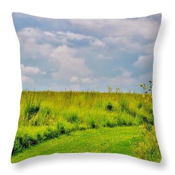 Pathway Through Wildflowers Throw Pillow