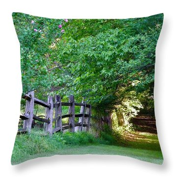 Throw Pillow featuring the photograph Pathway To A Sunny Summer Morning  by Alan Johnson