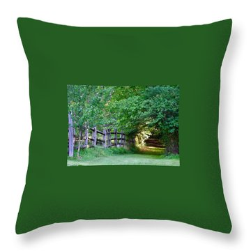 Pathway To A Sunny Summer Morning  Throw Pillow