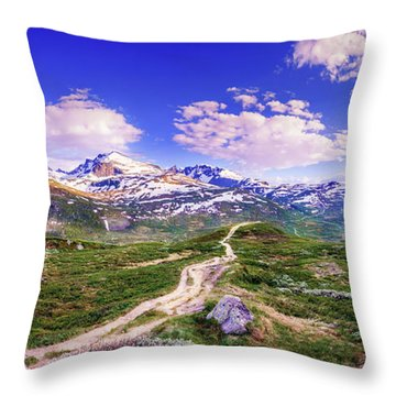 Pathway To A Valley Throw Pillow