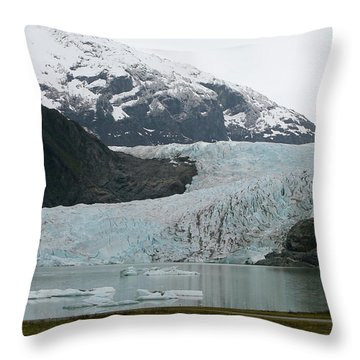 Pathway To An Icy Wonderland Throw Pillow