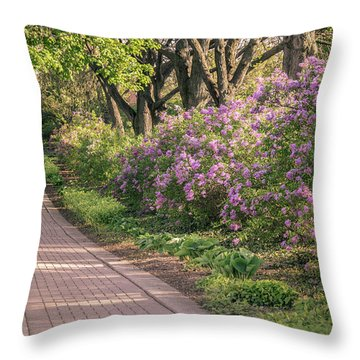 Pathway To Beauty In Lombard Throw Pillow