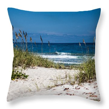 Pathway To The Ocean Throw Pillow by Nance Larson