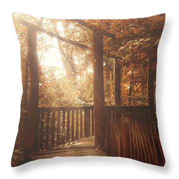 Pathway Throw Pillow by Wim Lanclus
