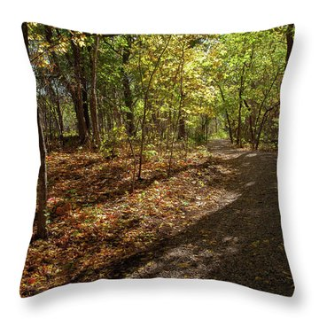 Throw Pillow featuring the photograph Pathways In Fall by Iris Greenwell