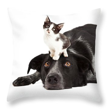 Patient Border Collie With Little Kitten On Head Throw Pillow