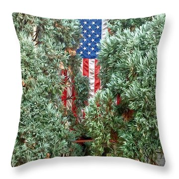 Patriotic Georgetown Home Throw Pillow by Lorella Schoales