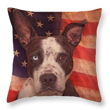 Patriotic Pit Bull  Throw Pillow by Brian Cross