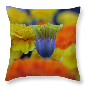 Pattern 274 _ Outstanding Throw Pillow