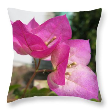 Pattern 276 _ Cohere Throw Pillow