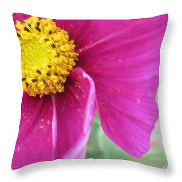 Pattern 278 _ Front Throw Pillow