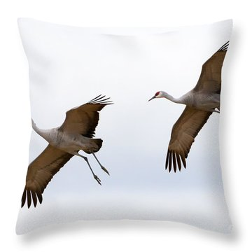 Pattern Of Two Throw Pillow by Mike Dawson