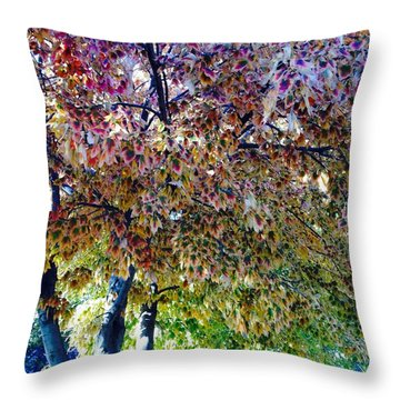 Patterned Metamorphosis Throw Pillow