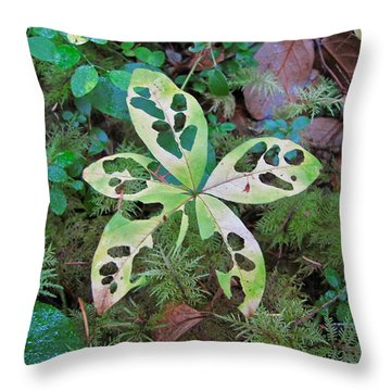 Throw Pillow featuring the photograph Patterns 5 by Sean Griffin