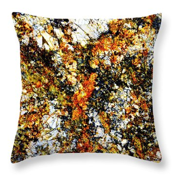 Throw Pillow featuring the photograph Patterns In Stone - 207 by Paul W Faust - Impressions of Light