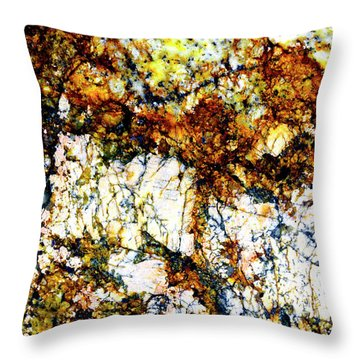 Throw Pillow featuring the photograph Patterns In Stone - 210 by Paul W Faust - Impressions of Light