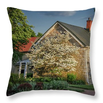 Patterns Of Shadow And Light Throw Pillow by Lois Bryan