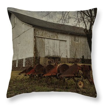 Patterson Farm  Throw Pillow