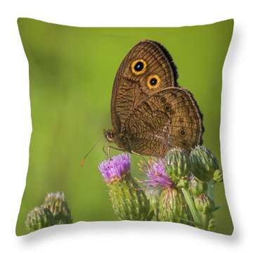Throw Pillow featuring the photograph Pauper's Throne by Bill Pevlor