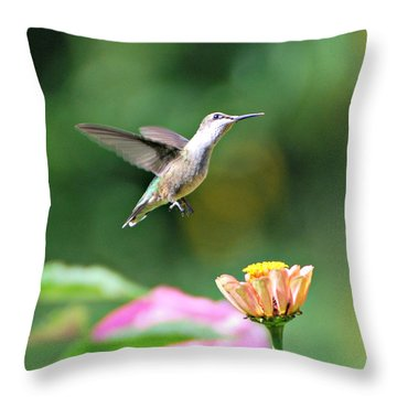 Throw Pillow featuring the photograph Pause by Lila Fisher-Wenzel