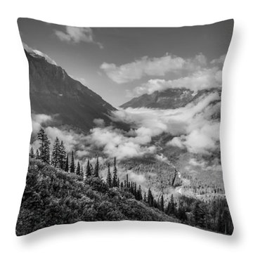 Pause To Wonder Throw Pillow
