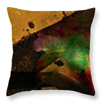 Throw Pillow featuring the photograph Paved But Not Over by Lin Haring