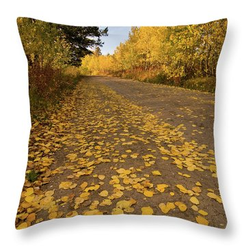 Throw Pillow featuring the photograph Paved In Gold by Steve Stuller