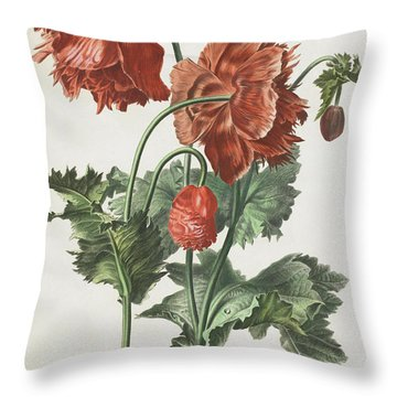 Pavot Cultive Throw Pillow