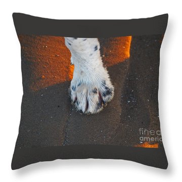 Paw On The Sand Throw Pillow