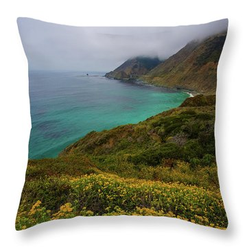 Pch 1 Throw Pillow